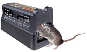 Piège à souris électronique